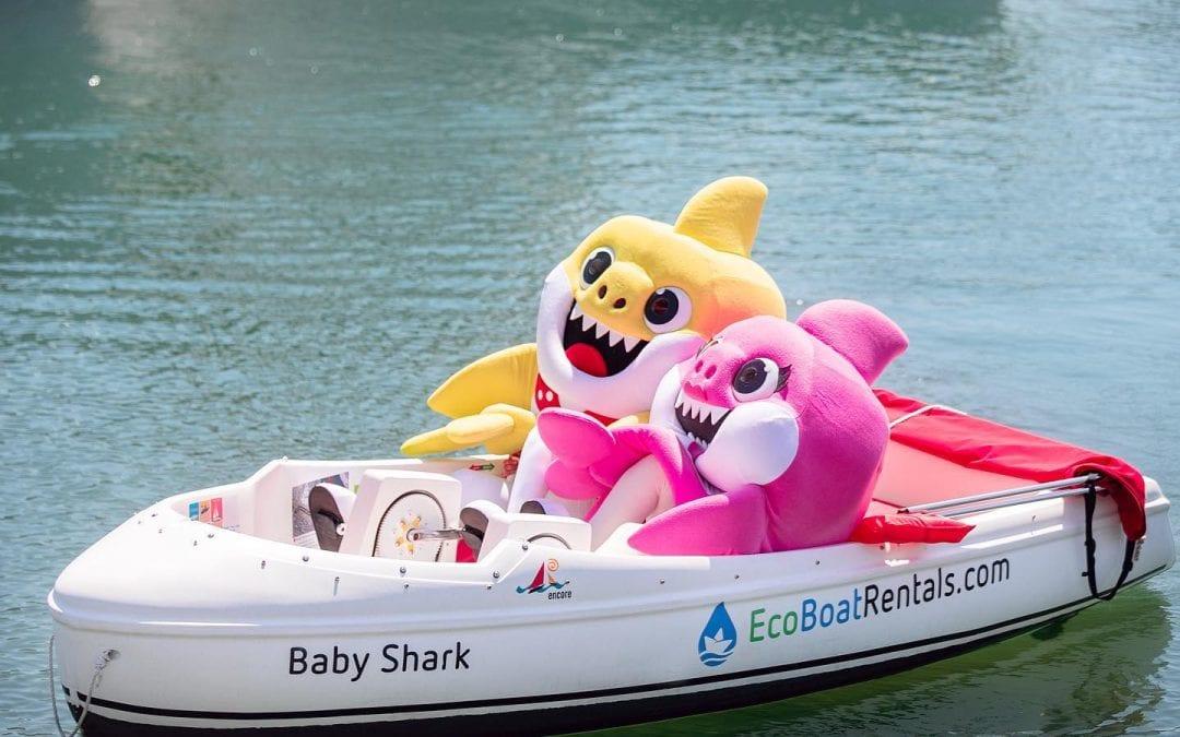Baby Shark Eco Boat Rentals