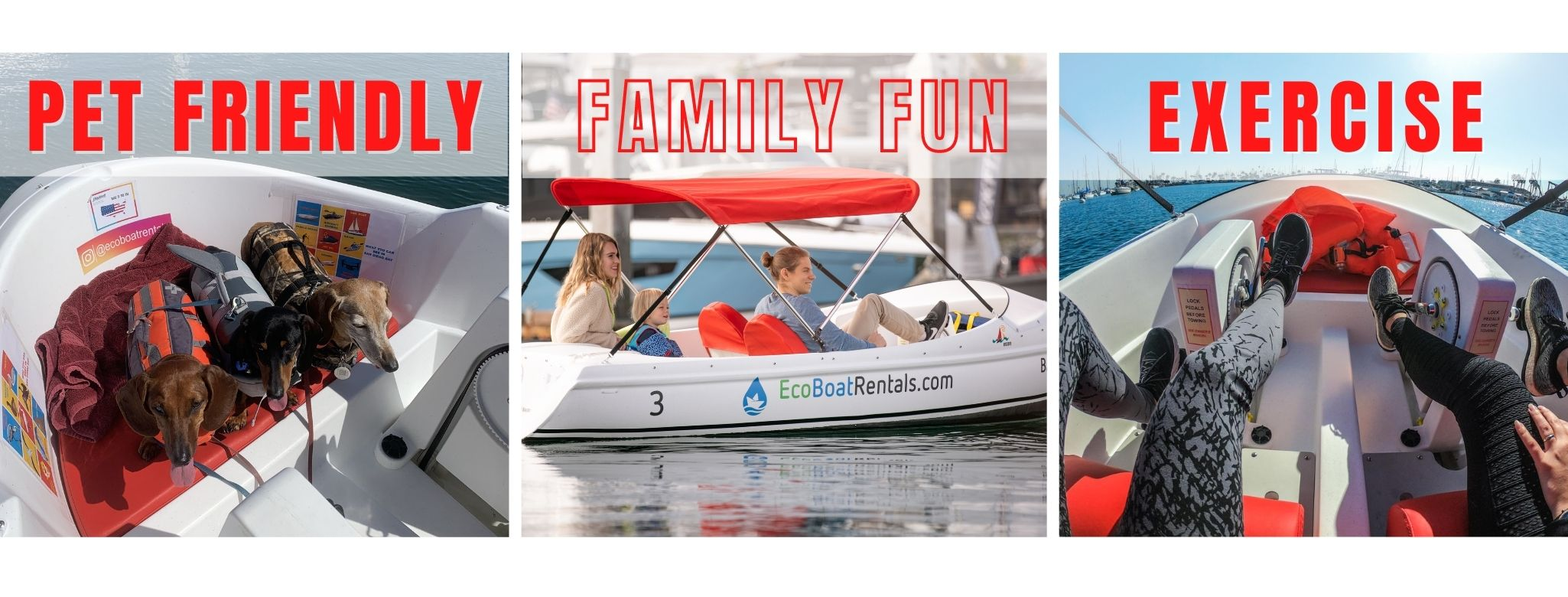 Eco Pedal Boat Rent Rental in San Diego Bay