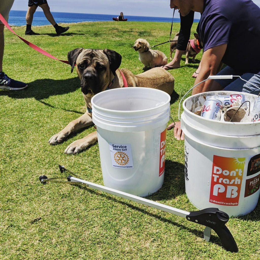Outdoor Activities In San Diego - neighborhood cleanup with Don't Trash PB