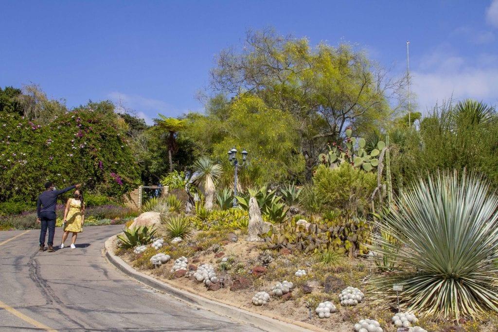 Outdoor Activities In San Diego - San Diego Botanic Garden in North County