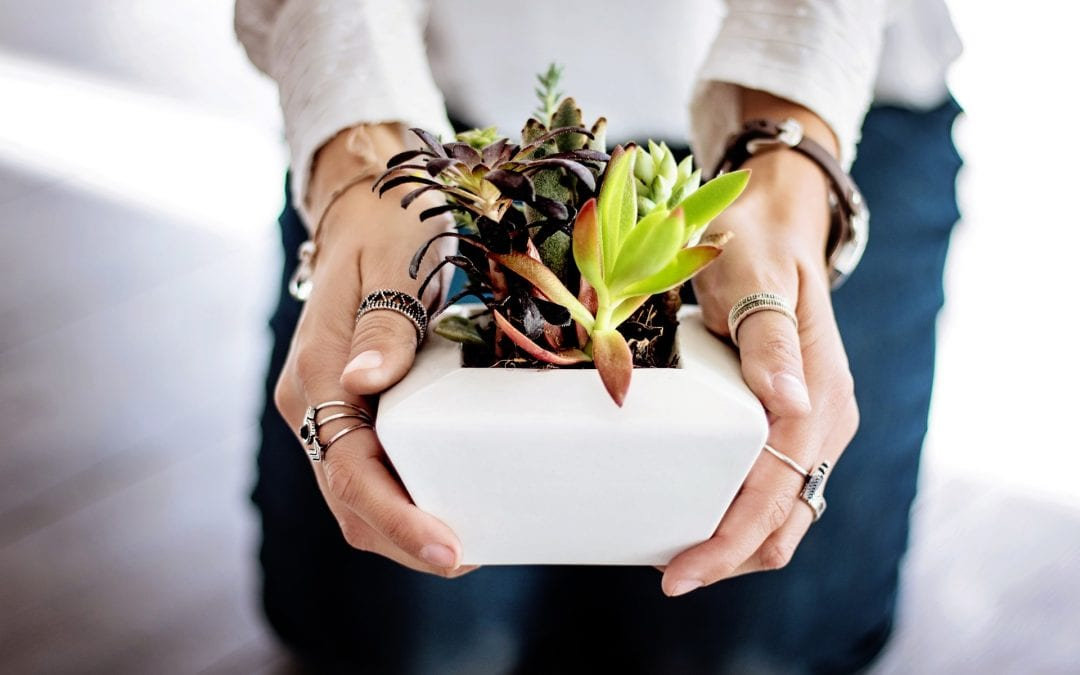 Starting an Eco-Friendly Company: Resources for ECOpreneurs